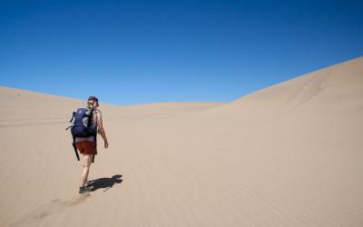 Desertwalk