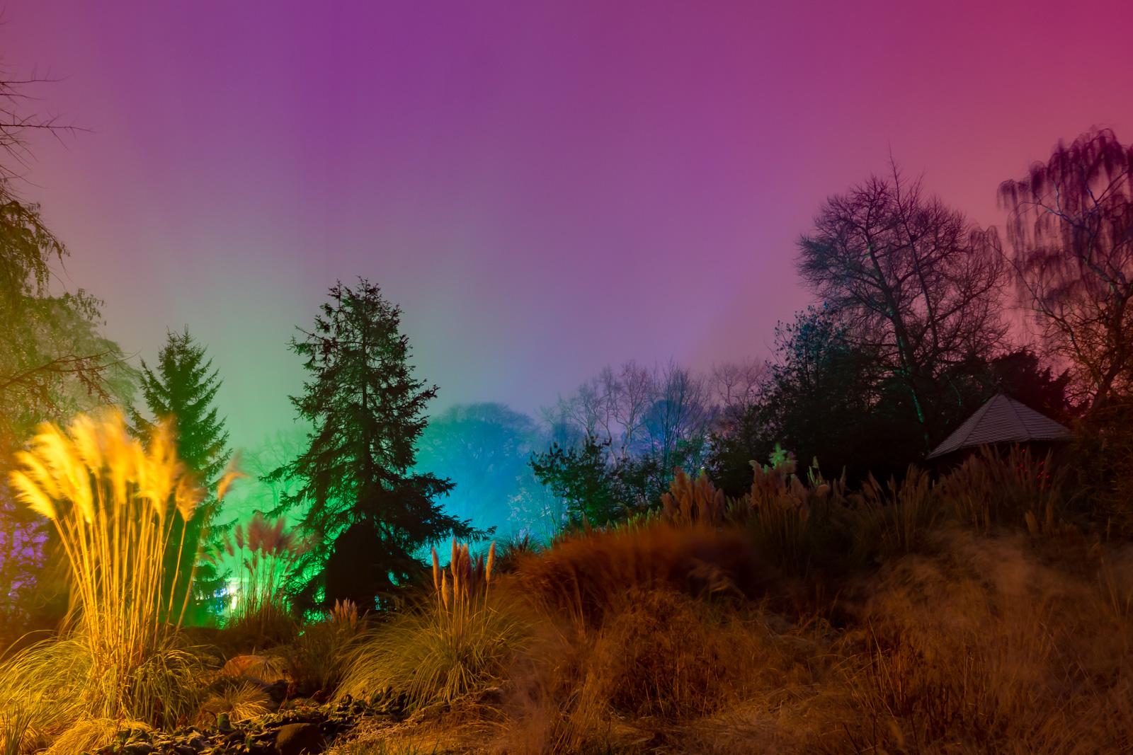 Winterlichter-Palmengarten HDR