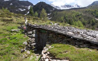 oberen Steinzgeralm