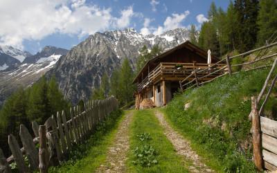Steinzgeralm im Antholzer Tal