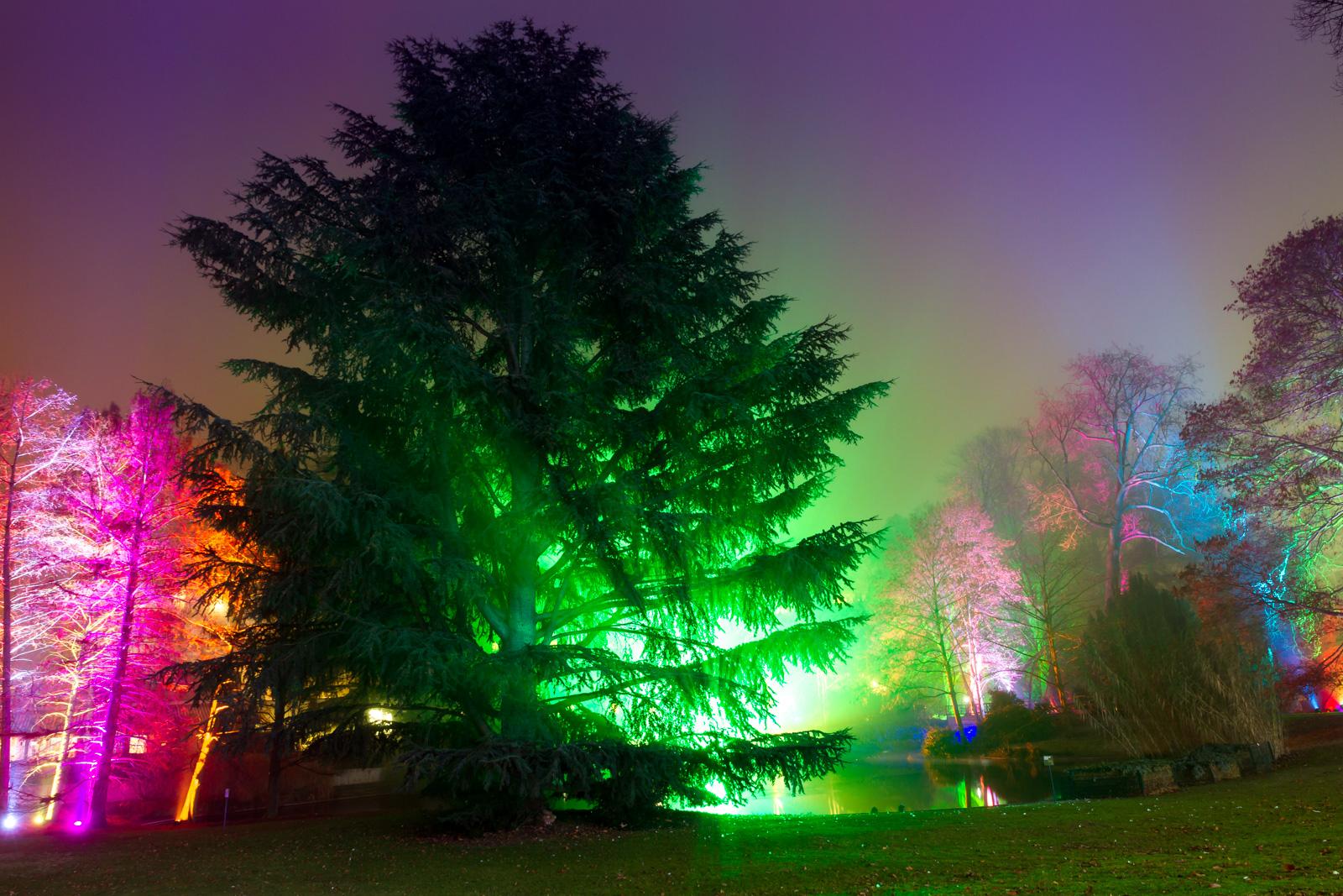 Winterlichter-Palmengarten